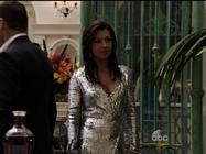Ming Na Wen Agents Of Shield Silver Dance 2