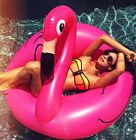 Shay Mitchell Bikini Flamingo